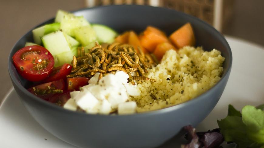 Salat mit Mehlwurmbeilage