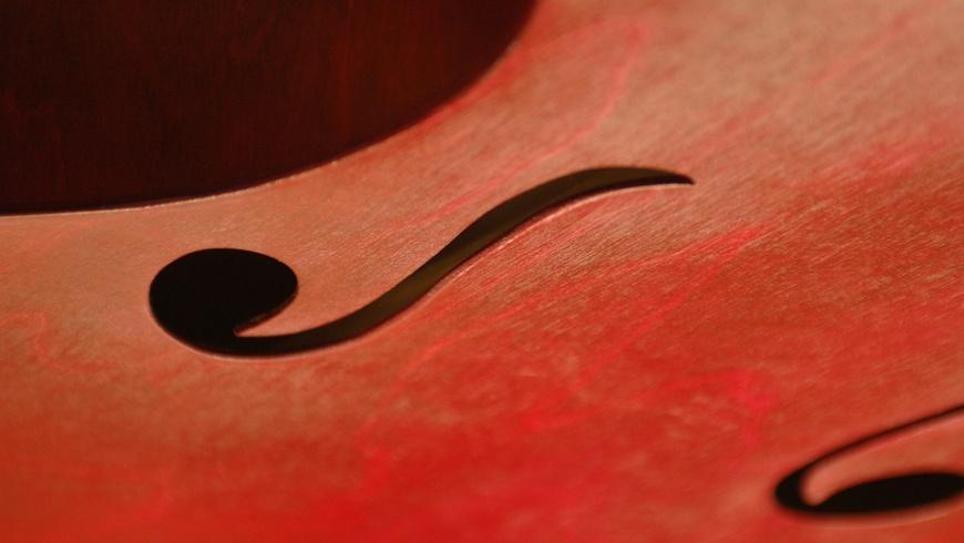 Violoncello : Hans-Werner-Henze-Musikschule