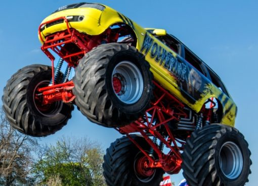 "Monster-Truck ""Wolverine"""